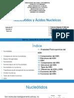 Acidos Nucleicos y Nucleotidos 21 [Autoguardado]