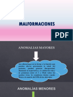 Malformaciones Final Sidiel