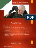artrosis de femur