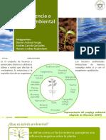 diapositivas estres ambiental