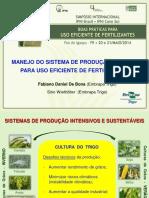 Palestra Fabiano Daniel.pdf