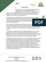 INFORME N°2 DE VIAS 1.docx