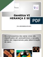Genetica Vi 2012