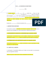 Acta sesion directorio