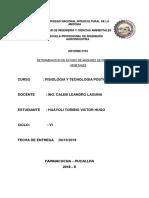 paractica n° 4DETERMINACIÓN DEL ESTADO DE MADUREZ EN PRODUCTOS VEGETALES