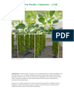 Aeroponic System Benefits, Components - A Full Guide _ Gardening Tips