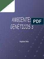 Ambientes Genéticos Minerales