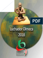 luchador olmeca 2018
