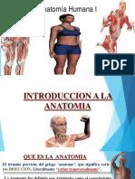 1 Tema Introduccion a La Anatomia