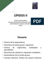 Lípidos II.pptx