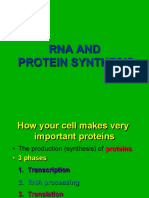 RNA and PROTEIN SYNTHESYS
