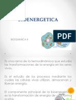 Bioenergetica II 2019