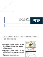 3 a Nutrient Cycling