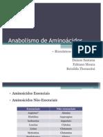 Anabolismo de Aminoácidos