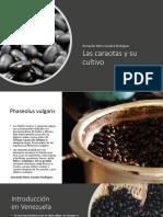 Las Caraotas y Su Cultivo_Armando Nerio Guedez Rodríguez