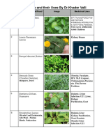 Medicinal Leaves and Their Uses by Dr.Khader Vali