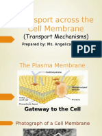 Transport across the Cell Membrane.odp