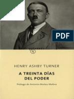 a treinta días del poder Henry Ashby Turner