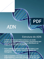 ADN - Power Point