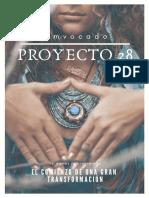 proyecto 28
