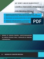 Diapositivas Procesal Penal II