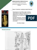 Tema 2 Plantas y Animales Bentonicos