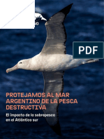 Protejamos Al Mar Argentino de La Pesca Destructiva - Greenpeace