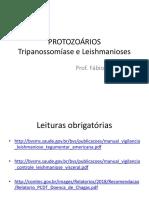 2. Leishmaniose e Doença de Chagas