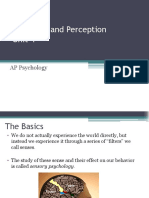 Ch 4 Notes Sensation and Perception (1)
