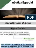 Hermneutica+Especial-Figuras+literarias