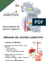 Clase 5 Sistema Digestivo-3.pdf