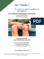 ChristopheBernard_6PlantesPourBlessures