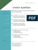 Plantilla Curriculum Cronologico