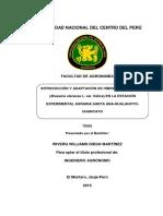 ñl37.pdf