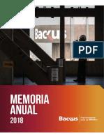 Memoria Anual 2018 Backus