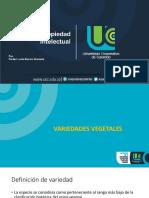Variedades vegetales, piedad Lucia Barreto ucc