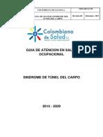 Guia de Tunel Carpiano 2015