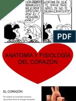 Anatomía y fisiología del corazón humano.