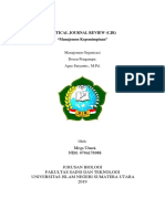 Critical Journal Review Mega Utami Uinsu Medan (Manajemen Organisasi) PDF