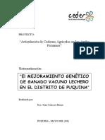 84-El MEJORAMIENTO GENÉTICO DE GANADO VACUNO LECHERO