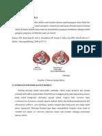 stenosis katup mitral.docx