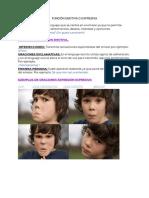 Suemy Zacarias - Memes de Funciones de La Lengua.