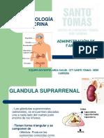 3.4) Farmacologia Endocrina