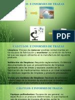 Calculos e Informes de Trazas .pptx