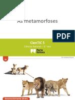 CienTic5- I5 Metamorfoses