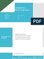Normas Para Pequeños y Medianos Entes en Argentina