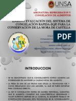 EVALUACION DEL SISTEMA DE CONGELACION RAPIDA EN LA MORA DE CASTILLA