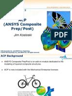 CAEA_v17_Update_seminar_ACP.pdf