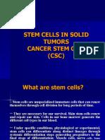 Cancer Stem Cells3