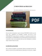 Principales Principios Del Proceso Penal